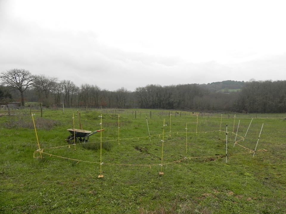On commence par définir les limites par rapport à la végétation présente, qui nous indique si le terrain retient l'eau.